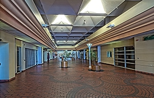 Palm Springs Mall