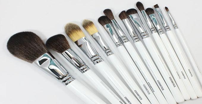 occ-brushes