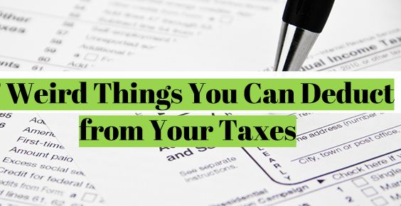7 Weird Things You Can Deduct from Your Taxes